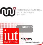 Logo IUT de Tarbes